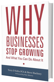 Why Businesses Stop Growing