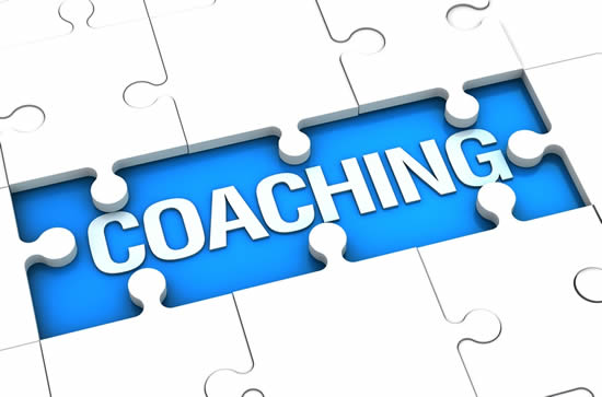 Small business coach & mentor